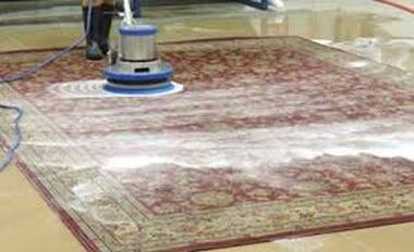 Persian rug being cleaned professionally with commercial carpet cleaning equipment.